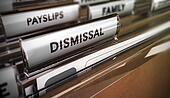 Dismissal Concept. Redundancy Plan