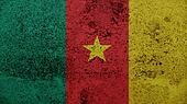 Cameroon Flag on the old wall