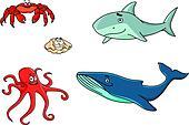 Set of marine sea life animals