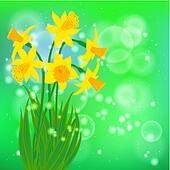 Vector card with daffodils on light green bokeh