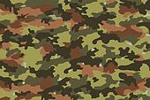 Camouflage Fabric, Texture 10
