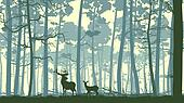 Illustration wild animals in wood.