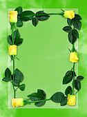 Rose frame 6