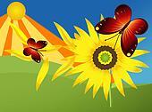 beautiful summer illustration