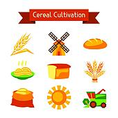 Cereal cultivation and farming icon set.