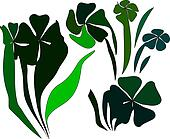 Green Shamrocks