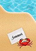 crab in summer
