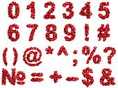 Red roses digits, isolated on white background