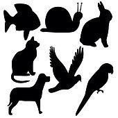 Symbols Animal