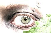 Green eye & pierce