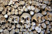 Human skulls and bones 1