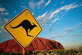 Kangaroo rock