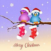 birds with Christmas socks