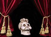 Skull and Drapes