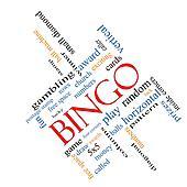 Bingo Word Cloud Concept Angled