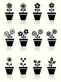 Flower, plant in pot vector icons