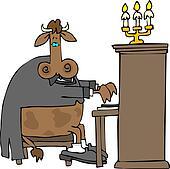 Cow Pianist