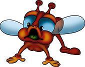 Dark orange fly