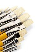 Set of clean paintbrushes