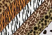 Safari skins