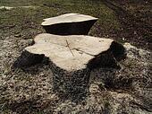 wood 003
