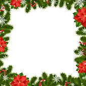 Frame Fir Tree Branches With Poinsettia