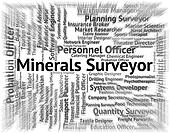 Minerals Surveyor Means Ores Employment And Work