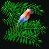 parrot tropical