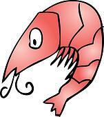 Cute shrimp