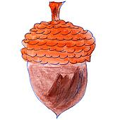watercolor drawing kids cartoon acorn on white background