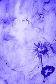 Purple marble paper