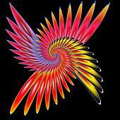 Spiral phoenix