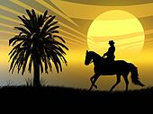 Equestrian in the sunset