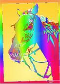 GRAPHIC HORSE BIGHEAD