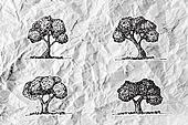 Set of trees with leaves on crumpled paper