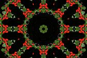 Hollyberry Kaleidoscope