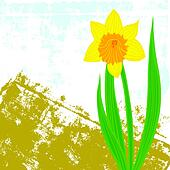 Vector card with one single daffodil