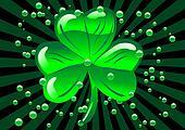 St Patricks shamrock