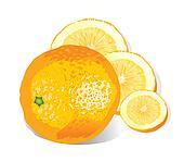 Orange (illustration)