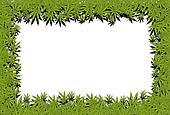 Marijuana frame