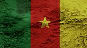 Cameroon Flag painting texture