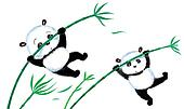 Jumping Panda on bamboo