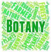 Botany Word Indicates Plant Life And Botanist