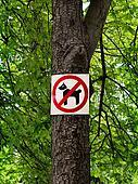 Sign prohibiting dog walking in a botanical garden