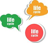 life cycle. Set of stickers, labels, tags. Template for infographics