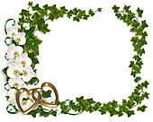 Orchid and Ivy Border frame