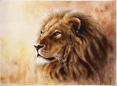 lion head with a majesticaly peaceful expression