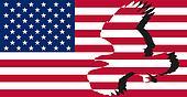 Striped American flag