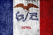 Iowa State Flag painted on luxury crocodile texture