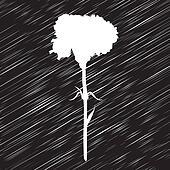 carnation stencil